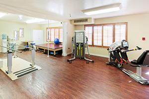 Indoor rehabilitation gym