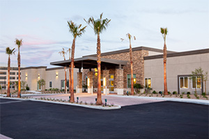 Palm trees and desert plants lining a shaded entrance to the building.